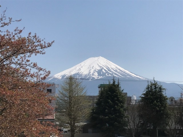 yamanashi5.jpg