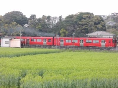 DSCN9311 (400x300)