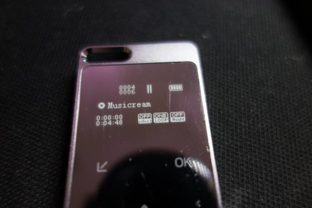 DSC00670-1.jpg