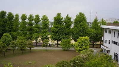 県立川口 空き地