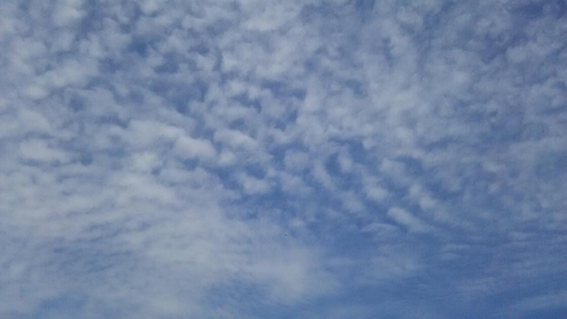 20170504 うろこ雲