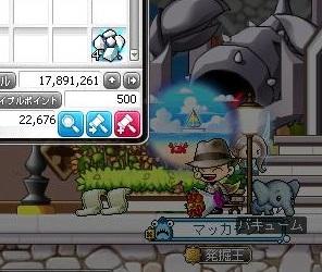 Maple16022a.jpg