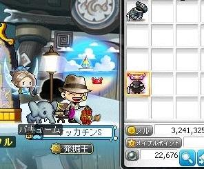 Maple16036a.jpg