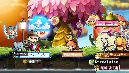Maple16039a.jpg