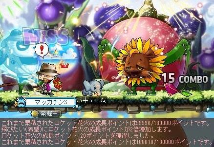 Maple16066a.jpg