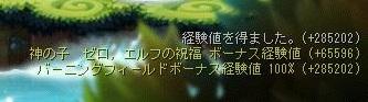 Maple16100a.jpg
