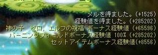 Maple16101a.jpg