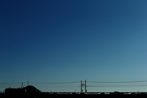 空でした・・・(´・ω・')