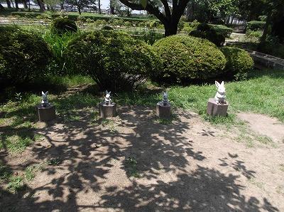 shimane63.jpg