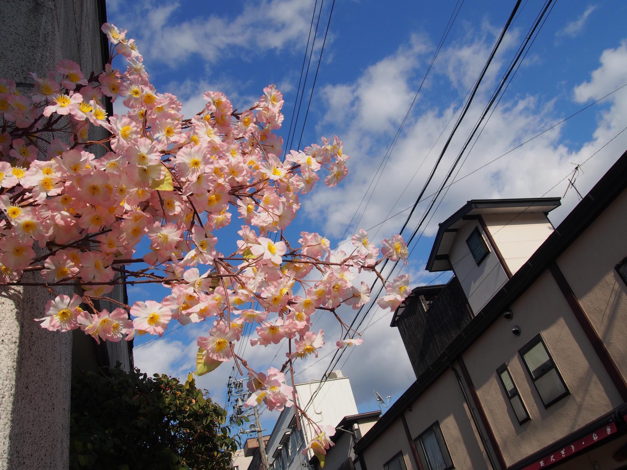 春のふく空