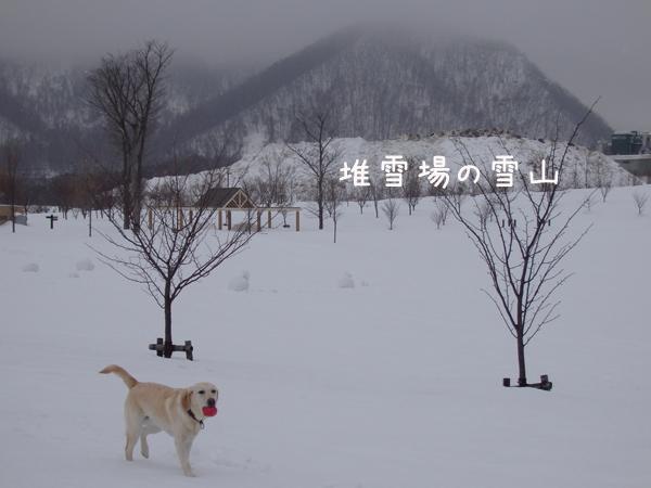 goyukiyama.jpg