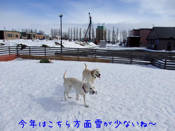 yuki_20170217181839e6c.jpg