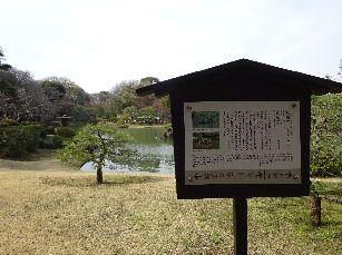 六義園@駒込 (22)