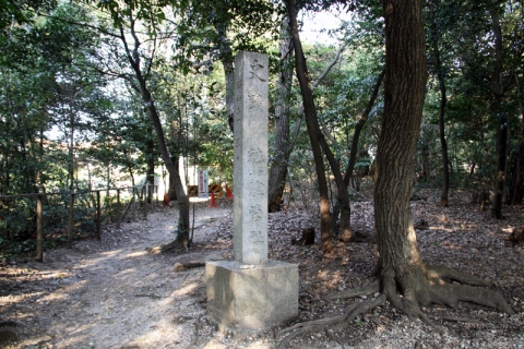 170504-4.jpg
