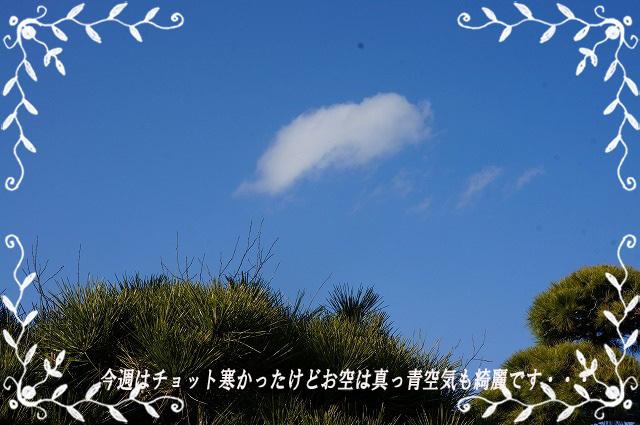 お空は綺麗