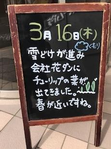 IMG_0947_20170322120050c2f.jpg