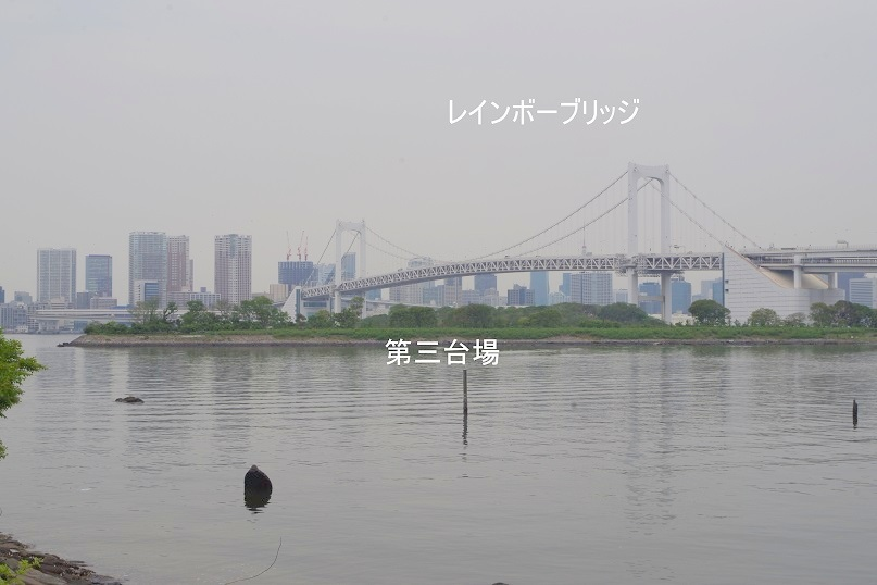 IMGP0326_0501h.jpg