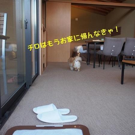ブログ箱根111 (2)