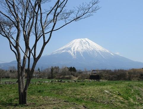 2 朝霧高原より富士山