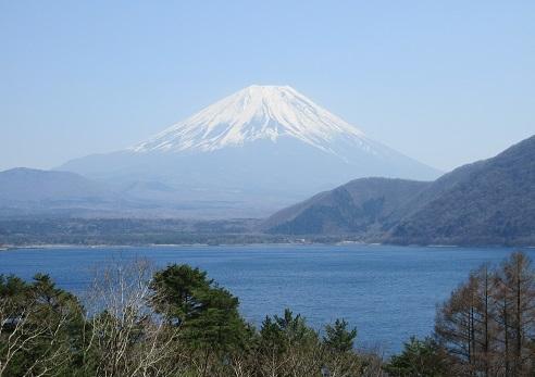 4 精進湖から富士山