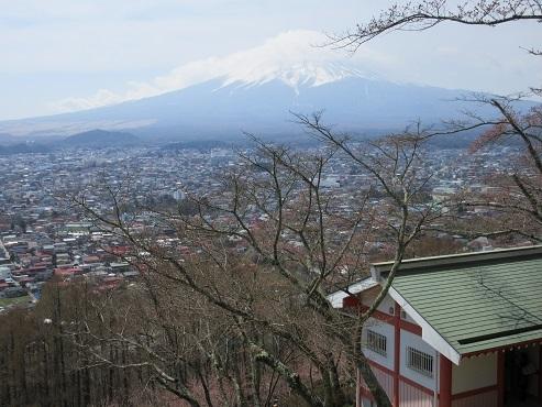 14 新倉山浅間公園 頂上