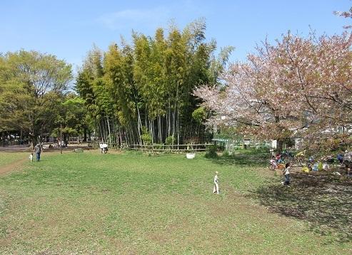 3 グリーンロード横の公園