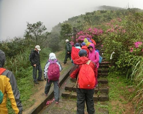 5 登山道の分岐点を左へ