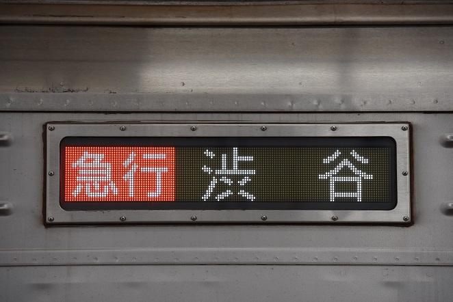 DSC_1419.jpg