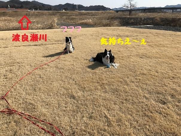 IMG_0934_201703181909587fc.jpg
