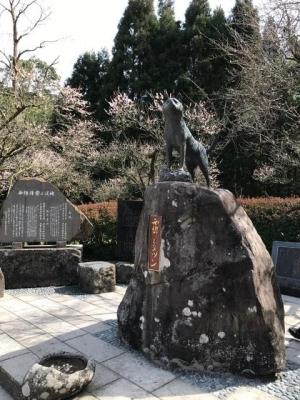 西郷どんの犬 ツンの銅像