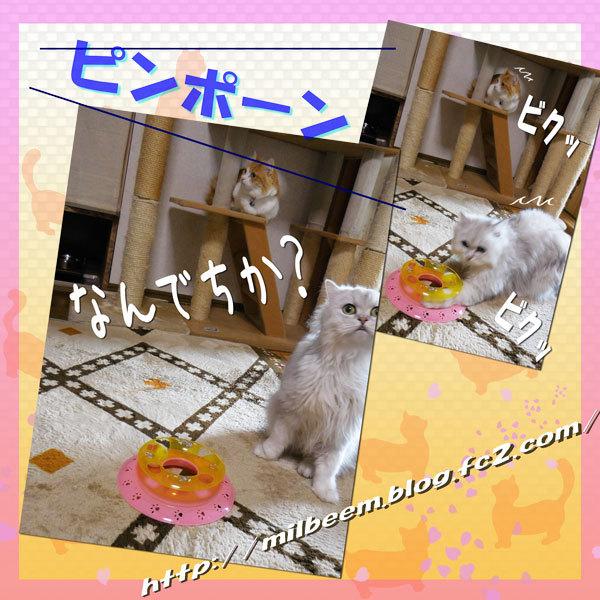 omotyadeAsobu004.jpg