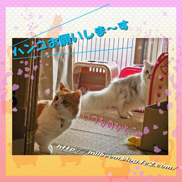 omotyadeAsobu005.jpg