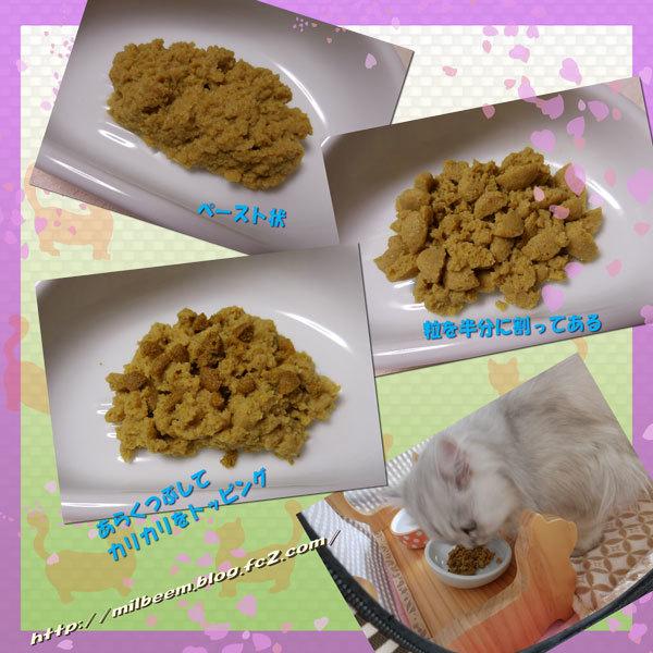 ryouyouRay004_2.jpg