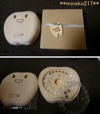 s-乳歯ケース1