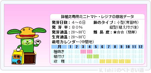 ペトさい(レジナ・R)15