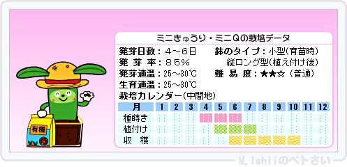 ペトさい(ミニきゅうり)08