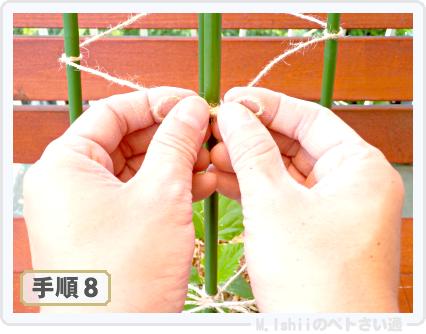ペトさい(ミニきゅうり・改)27