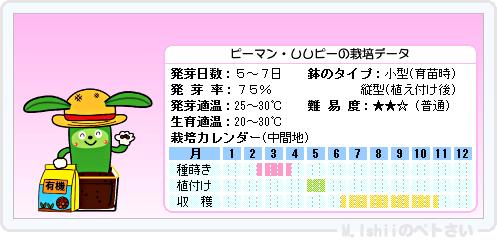ペトさい(ししピー)07