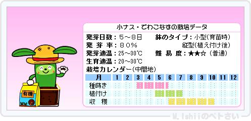 ペトさい(小ナス)10