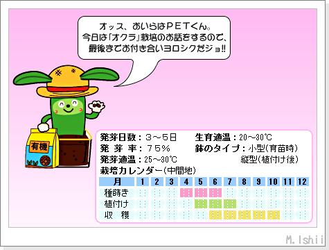 ペット栽培III(オクラ)01