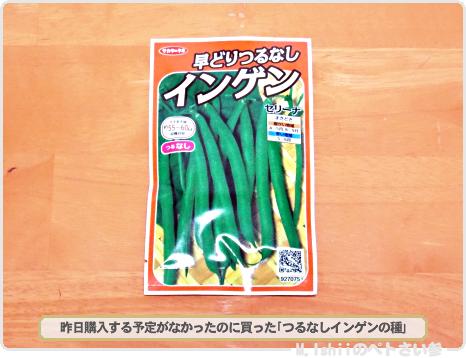 春夏向け野菜の種2017_04