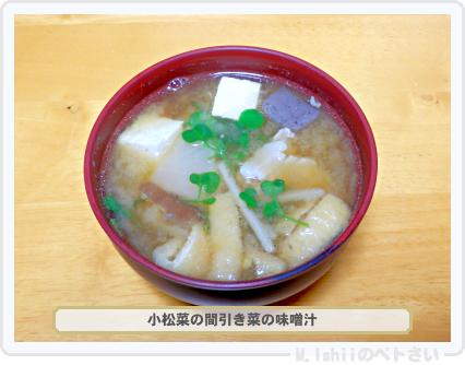 ペトさい(小松菜)31