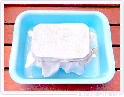 ペトさい(たべたい菜)10