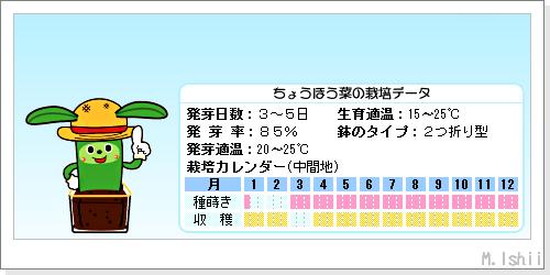 ペット栽培III(ちょうほう菜)02
