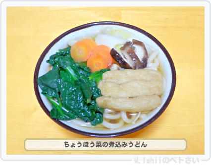 ペトさい(ちょうほう菜)34