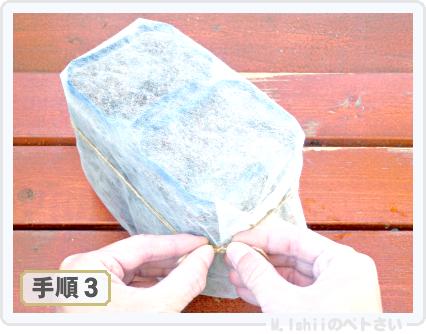ペトさい(山東菜)06