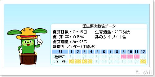 ペット栽培III(壬生菜)02
