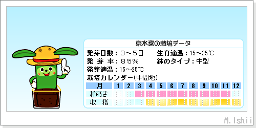 ペット栽培III(京水菜)02