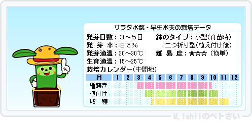 ペトさい(サラダ水菜・改)15