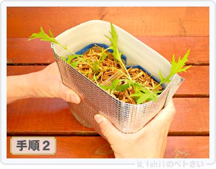 ペトさい(サラダ水菜・改)34